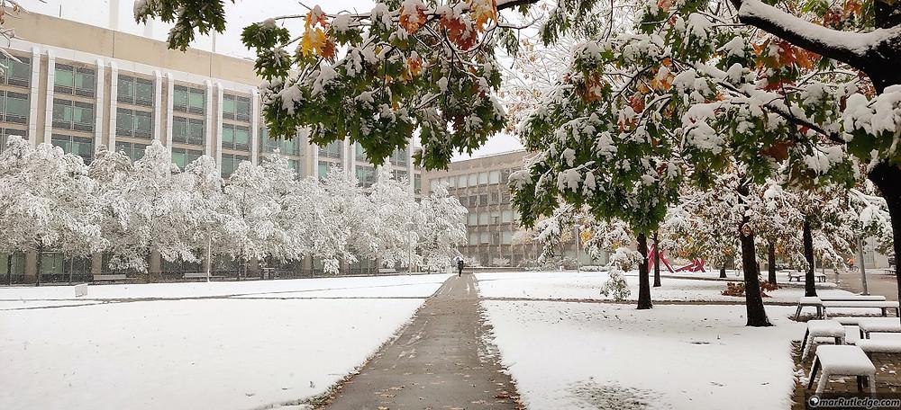 Hockfield Court at MIT with Fresh Snow