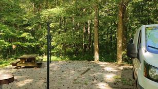 Green Campsite