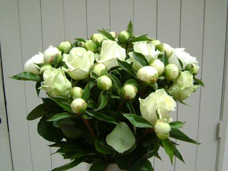 Des fleurs de saison