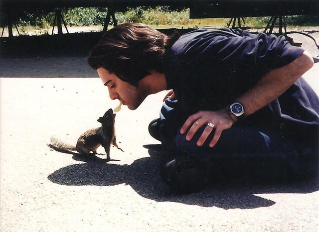 Squirrel Master 2001