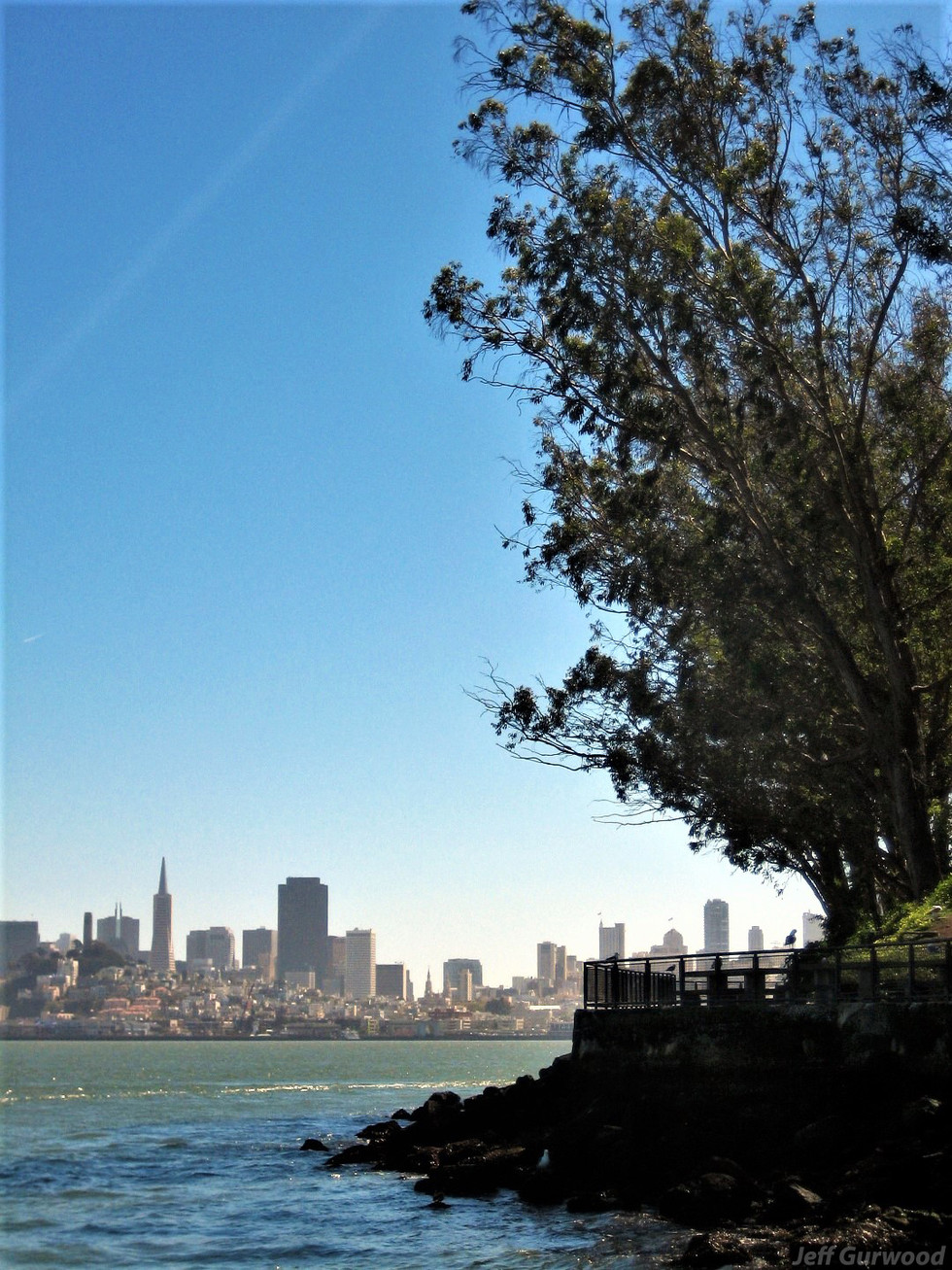 San Fransico (18) 2008