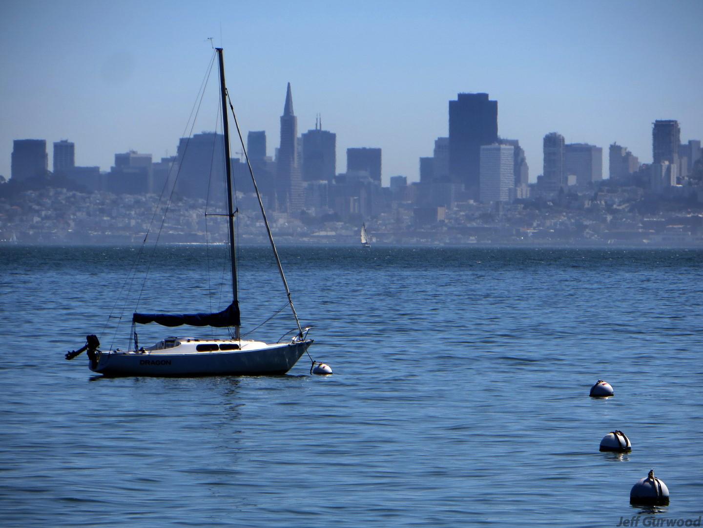 San Fransico (9) 2015