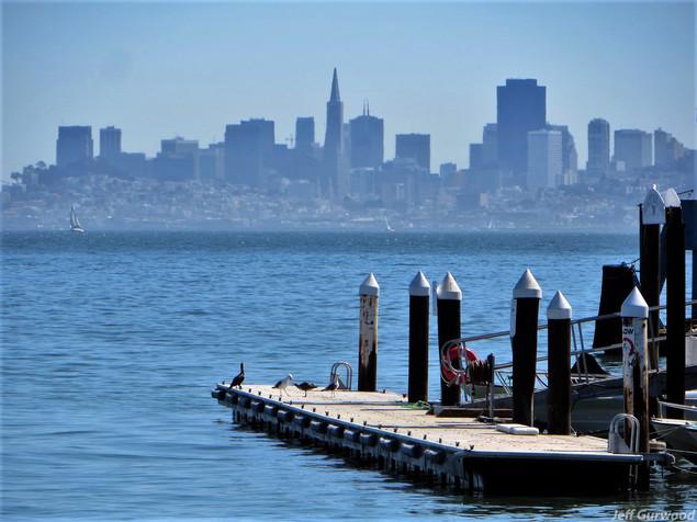 San Fransico (23) 2015