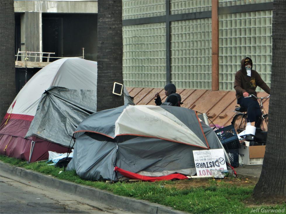 Hollywood Quarantine 3-31-20 Sunset Campers