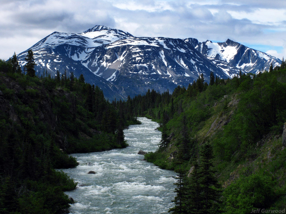 Alaska (1) 2008