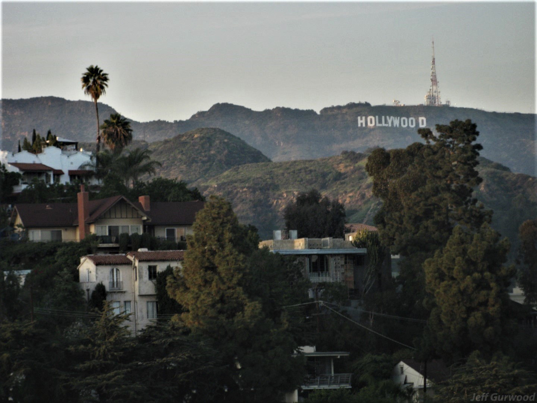 Hollywood Hills 2009