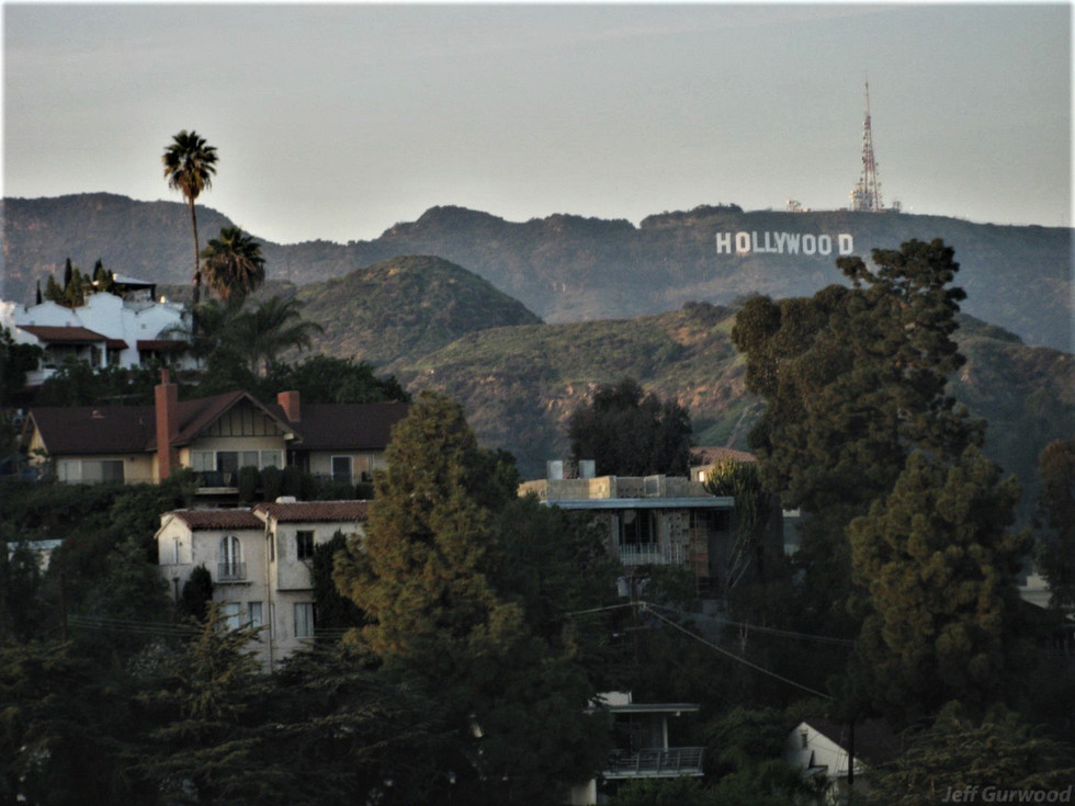 Hollywood Hills 2009