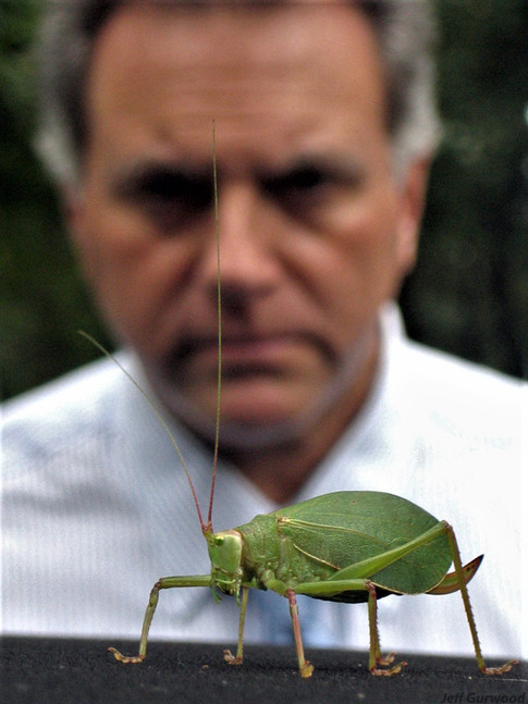 Giant Bug Friend and Dad 2006 3