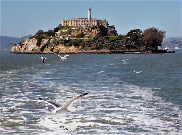 San Fransico (20) 2008