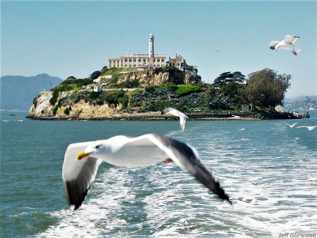 San Fransico (2) 2008