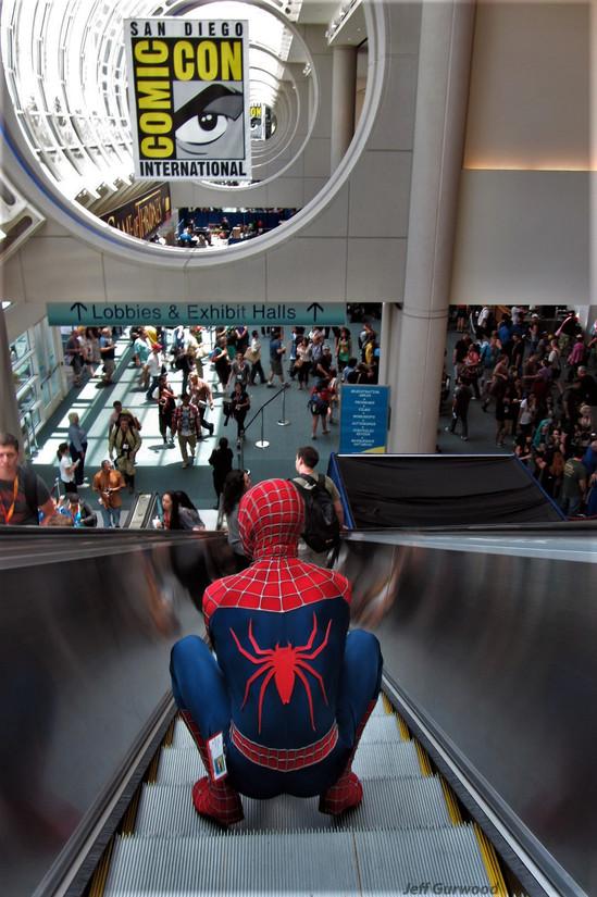 Descending Spiderman 2012