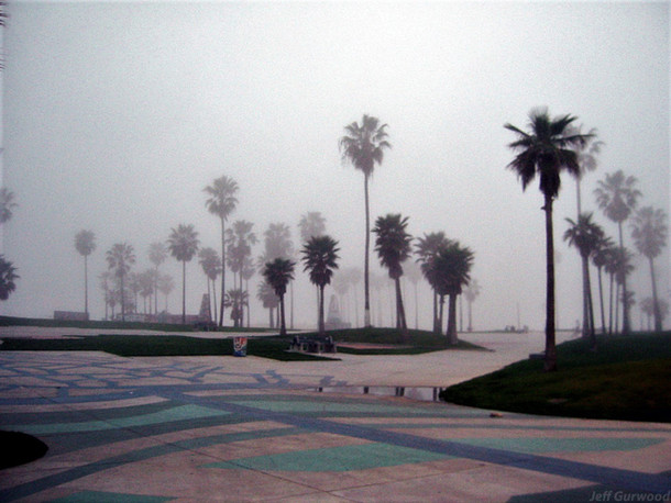 Foggy Beach Morning 2004
