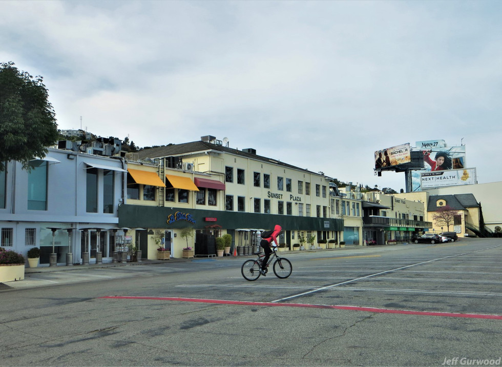 Hollywood Quarantine 3-31-20 Sunset Plaza