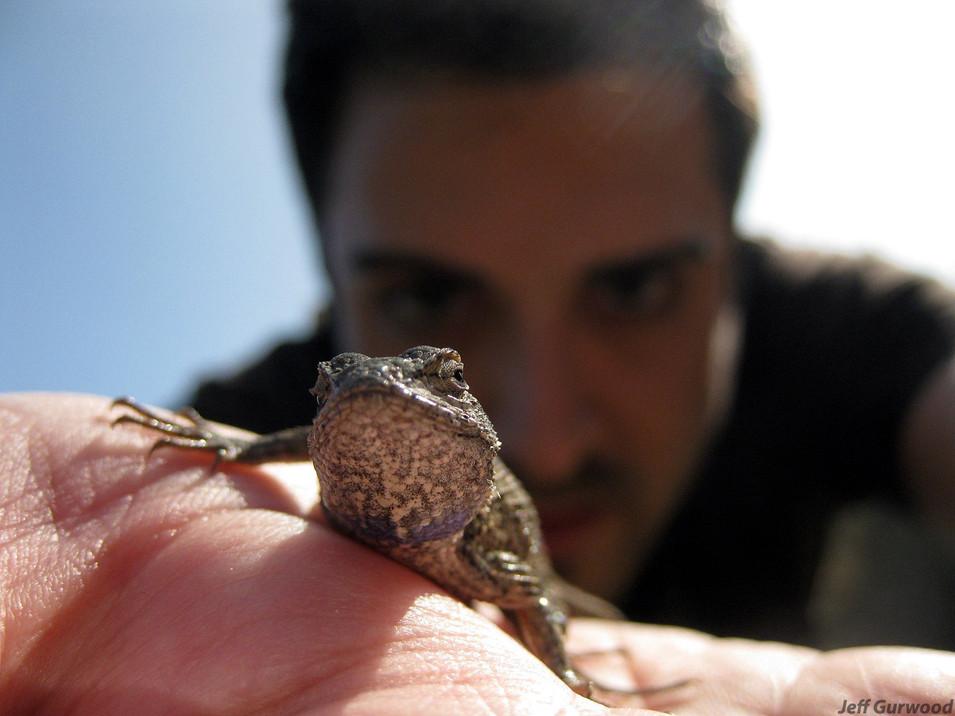 Runyon Canyon Lizard Selfie 2009