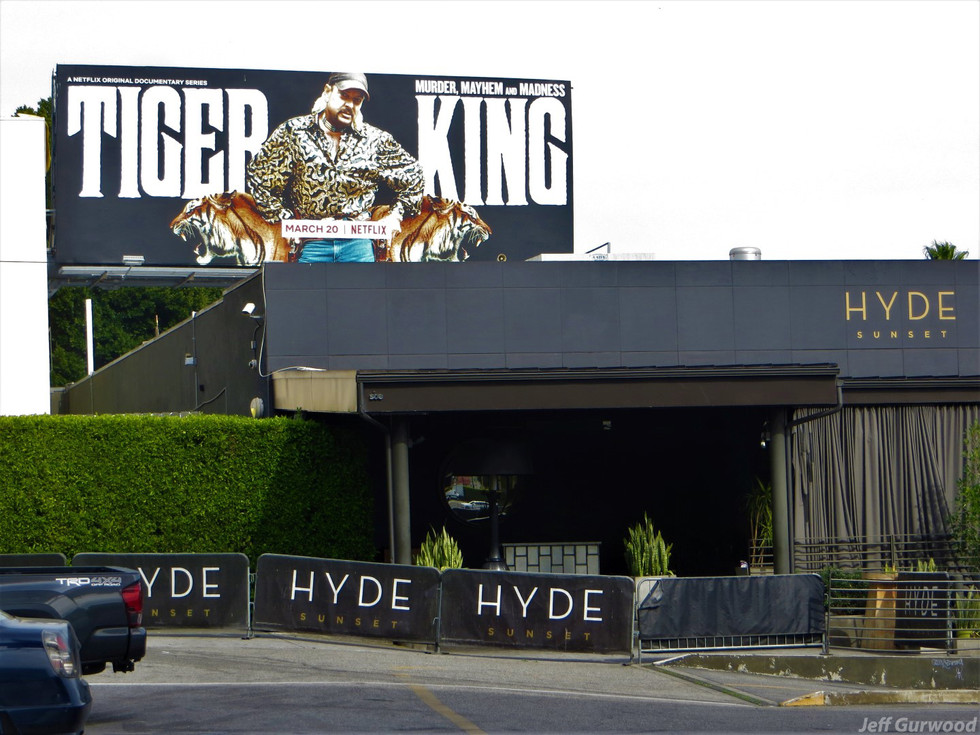 Hollywood Quarantine 3-31-20 Hyde and Tiger King