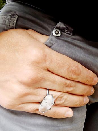 anillo animal