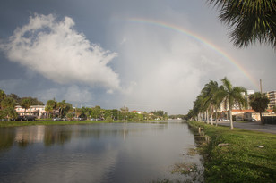 Florida 49.jpg