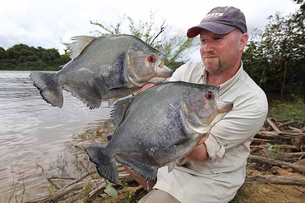 Suriname 46.jpg