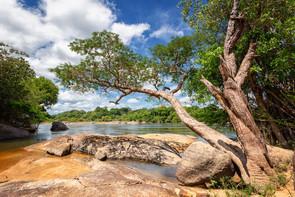 Guyana_Angelreise 108.jpg