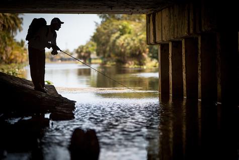 Florida 48.jpg