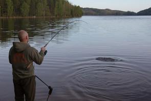 Schweden 24014.jpg