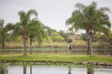 Florida 45.jpg