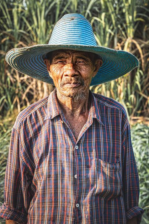 Thailand Reisbauer.jpg