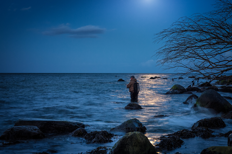 Vollmond Nachtangeln