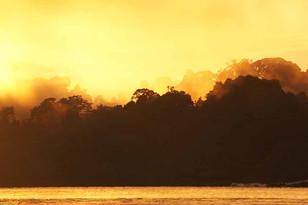 Suriname 51.jpg