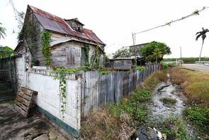 Suriname 16.jpg