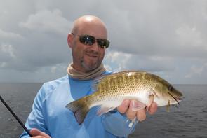 Florida24.jpg