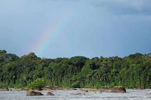 Suriname 28.jpg