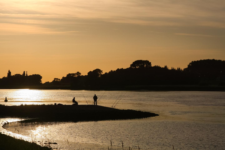Buhnenangeln auf Zander Elbe