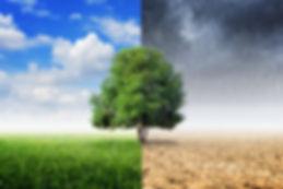 concepto-cambio-climatico_78335-320.jpg