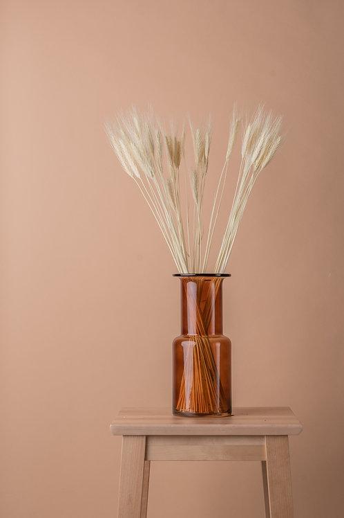 Tørket naturlig hvete - lys