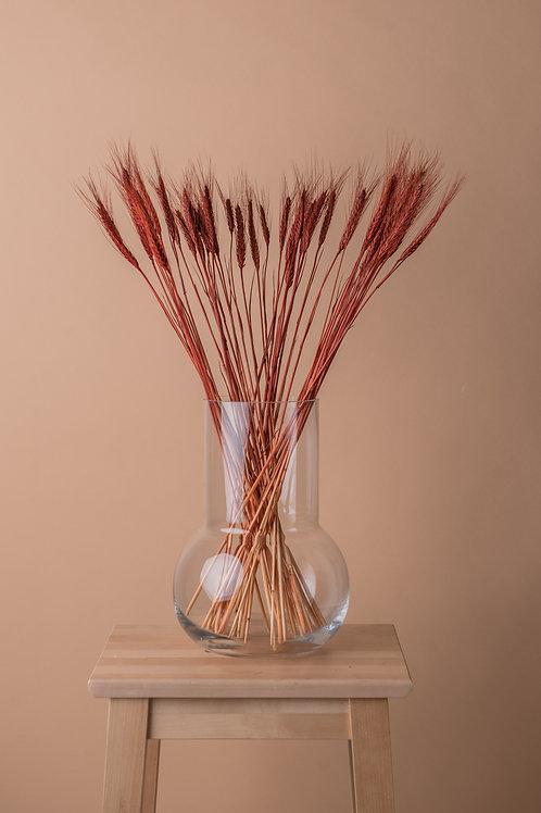 Kopia Tørket naturlig hvete - rød