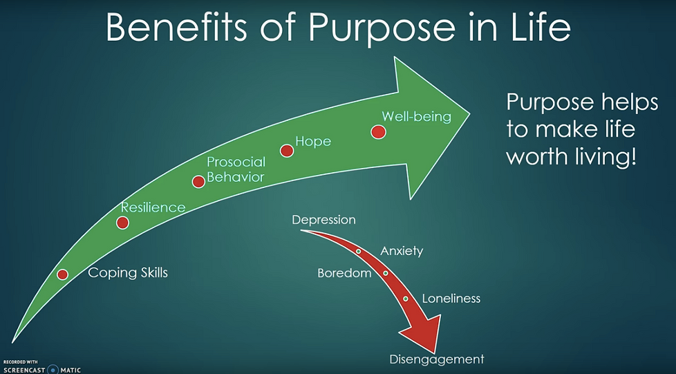 Benefits of Purpose.png