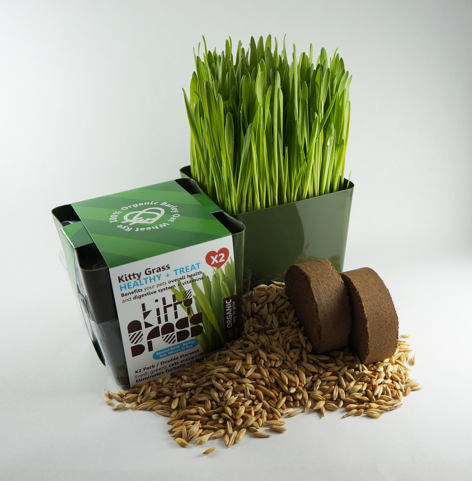 Grow Grass Kit