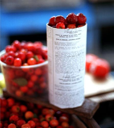 red-berries.s.jpg