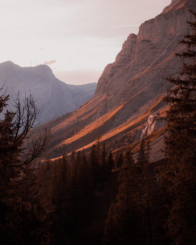 the alpinists3.jpg