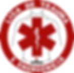 liga do trauma ufrgs - RS.png