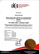 TS 18001 : 2007.png