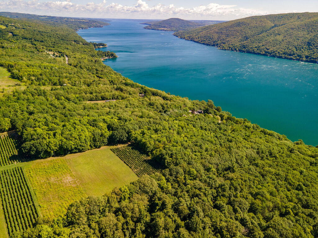 Ariel view of Canandaigua Lake.jpg