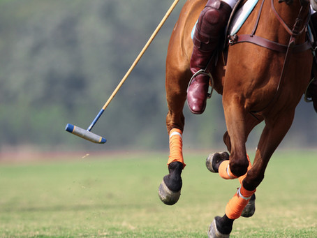 Things to Do in Vero Beach: Attend a Polo Match
