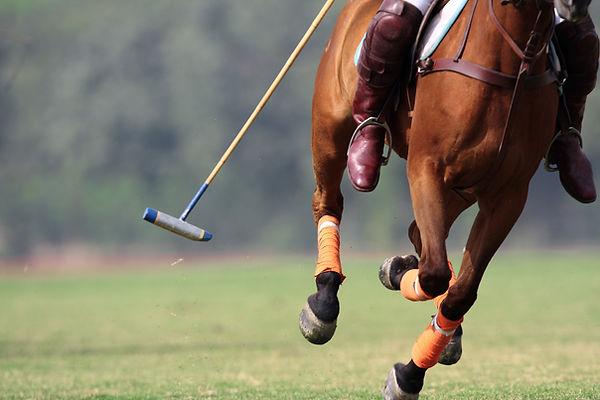 Pferd läuft mit Poloschläger