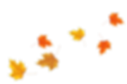 AUTUMN_LEAVES.png