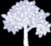 arbre_blanc.png