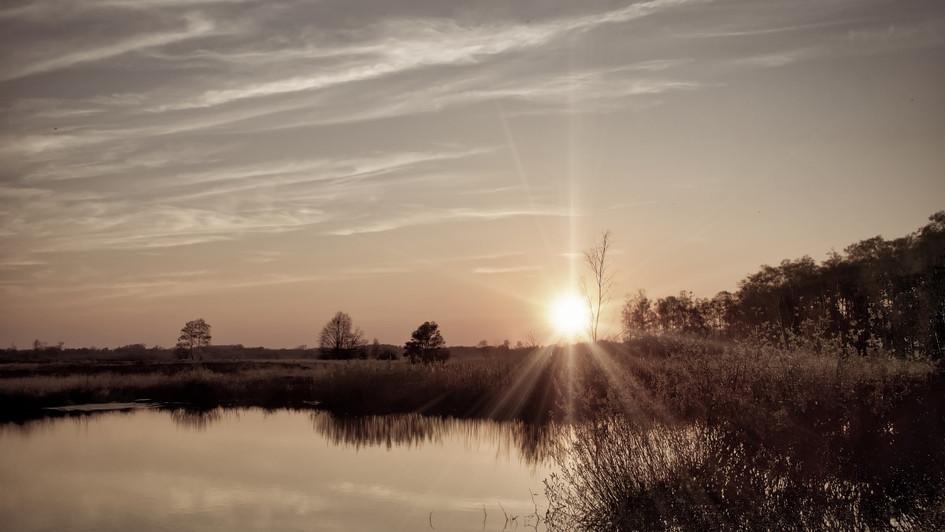 Sonnenblicke