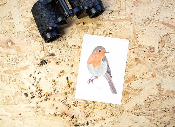 Robin Postcard // Mini Print