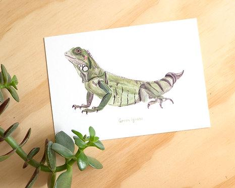 Green Iguana Postcard // Mini Print